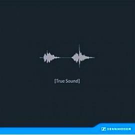森海塞爾鑑聽盤-真實的聲音LP